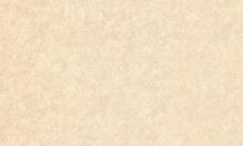 Обои ВЕРСАЛЬ 6021-81 (10,05*1,06) флизелиновые