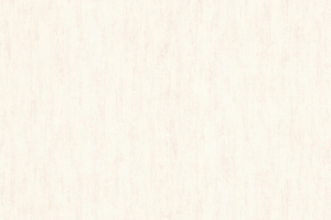 Обои Браво 81100BR04 виниловые на флизелиновой основе (1,06х10,05м)