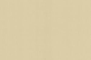 Обои Браво 81107BR02 виниловые на флизелиновой основе (1,06х10,05м)