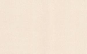 Обои Браво 81120BR13 виниловые на флизелиновой основе (1,06х10,05м)
