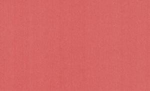 Обои Браво 81124BR16 виниловые на флизелиновой основе (1,06х10,05м)
