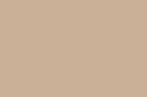 Обои Браво 81126BR16 виниловые на флизелиновой основе (1,06х10,05м)