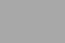 Обои Браво 81126BR19 виниловые на флизелиновой основе (1,06х10,05м)