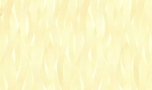 Обои Браво 81130BR28 виниловые на флизелиновой основе (1,06х10,05м)