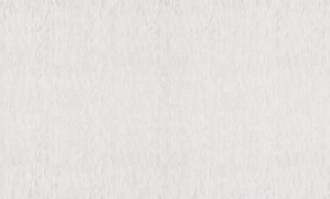 Обои Браво 81132BR20 виниловые на флизелиновой основе (1,06х10,05м)