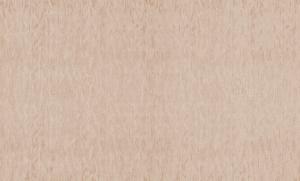 Обои Браво 81132BR23 виниловые на флизелиновой основе (1,06х10,05м)