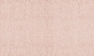Обои Браво 81132BR25 виниловые на флизелиновой основе (1,06х10,05м)