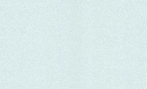 Обои Браво 81140BR17 виниловые на флизелиновой основе (1,06х10,05м)