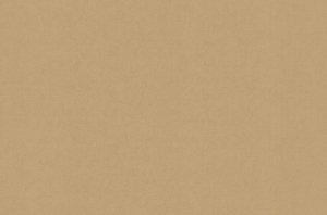 Обои Браво 81142BR16 виниловые на флизелиновой основе (1,06х10,05м)