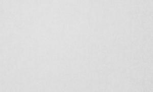 Обои Браво 81145BR10 виниловые на флизелиновой основе (1,06х10,05)