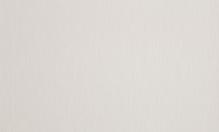 Обои Браво 81186BR20 виниловые на флизелиновой основе (1,06х10,05)
