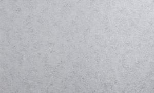 Обои Браво 81192BR37 виниловые на флизелиновой основе (1,06х10,05м)