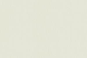 Обои Браво 81208BR40 виниловые на флизелиновой основе (1,06х10,05м)
