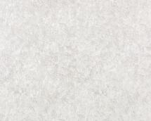 Флизелиновые обои СТАТУС 9009-20 (1,06х10,05)