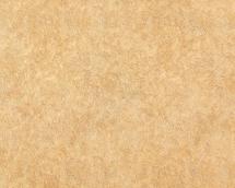 Флизелиновые обои СТАТУС 9009-22 (1,06х10,05)