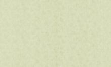 Обои флизелиновые СТАТУС 9022-03 (1,06х10,05м)