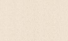 Обои флизелиновые СТАТУС 9023-03 (1,06х10,05м)