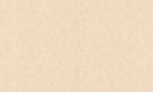 Обои флизелиновые СТАТУС 9023-05 (1,06х10,05м)
