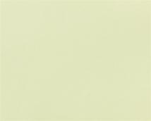 Обои флизелиновые СТАТУС 903-18 покрытие винил