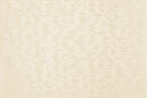 Флизелиновые обои СТАТУС 9041-23 (1,06х10,05)
