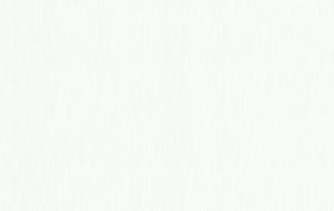 Обои флизелиновые СТАТУС 9049-20 (1,06х10,05м)
