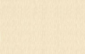 Обои флизелиновые СТАТУС 9049-24 (1,06х10,05м)
