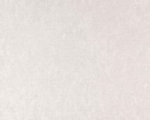 Обои виниловые Статус 9051-10 на флизелиновой основе