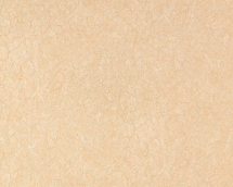 Обои виниловые Статус 9051-12 на флизелиновой основе