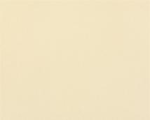 Обои Статус виниловые 906-14 на флизелиновой основе