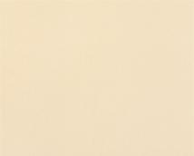 Обои Статус виниловые 906-15 на флизелиновой основе