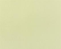 Обои Статус виниловые 906-18 на флизелиновой основе
