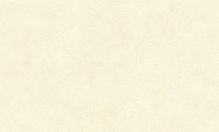 Обои флизелиновые СТАТУС 9073-20 (1,06х10,05м)