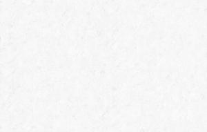 Обои флизелиновые СТАТУС 9076-20 (1,06х10,05м)