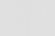 Обои флизелиновые СТАТУС 9082-20 (1,06х10,05м)