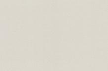 Обои флизелиновые СТАТУС 9082-24 (1,06х10,05м)