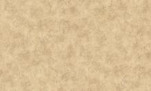 Обои флизелиновые СТАТУС 9083-22 (1,06х10,05м)