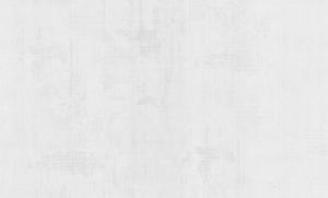 Обои Статус 9095-10 флизелиновые (1,06х10,05)