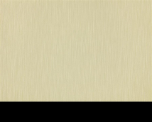 Обои Статус виниловые 936-28 на флизелиновой основе