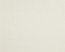Флизелиновые обои СТАТУС 937-21 (1,06м *10,05м) Эдем